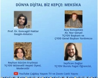 Digital Gezi - Meksika